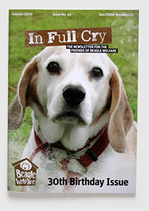 Branding, design & art direction of newsletter for the Beagle Welfare charity by Nick McKay. Newsletter cover